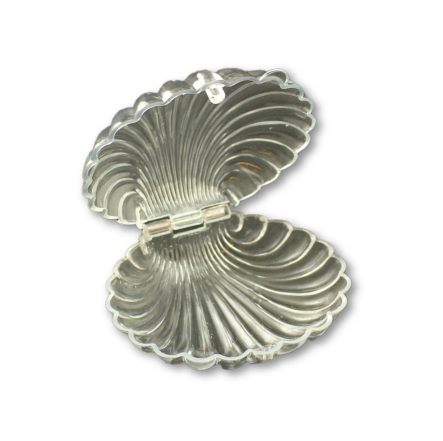 150 Shells By the Sea Authentic Seashell Beach Wedding Place Card Photo Holder